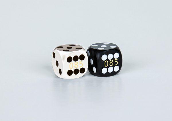 Precision dice calibrated White and black coder