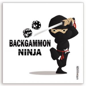 katgammon Car Sticker 11