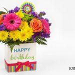 Happy Birthday Katgammon 008